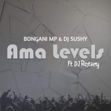Ama Levels  By Bongani MP, DJ Sushy