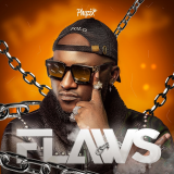 Flaws  By Phyzix