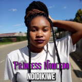 Ndidikiwe  By Princess Noncedo