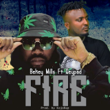 Fire  By Bekey Mills