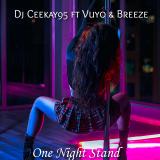 One Night Stand  By Dj Ceekay95