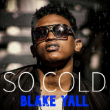 So Cold  By Blake Yall