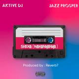 Sheka  ( Wakanyanya ) By Aktive DJ