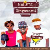 Naledi  ( Ungowami ) By Jazzbuda